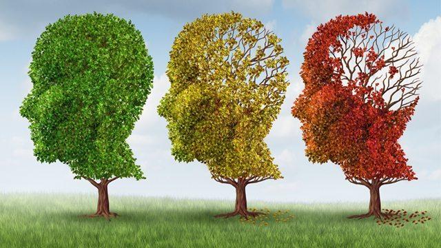 Лечение болезни Альцгеймера за рубежом в Турции — диагностика, лечение, профилактика