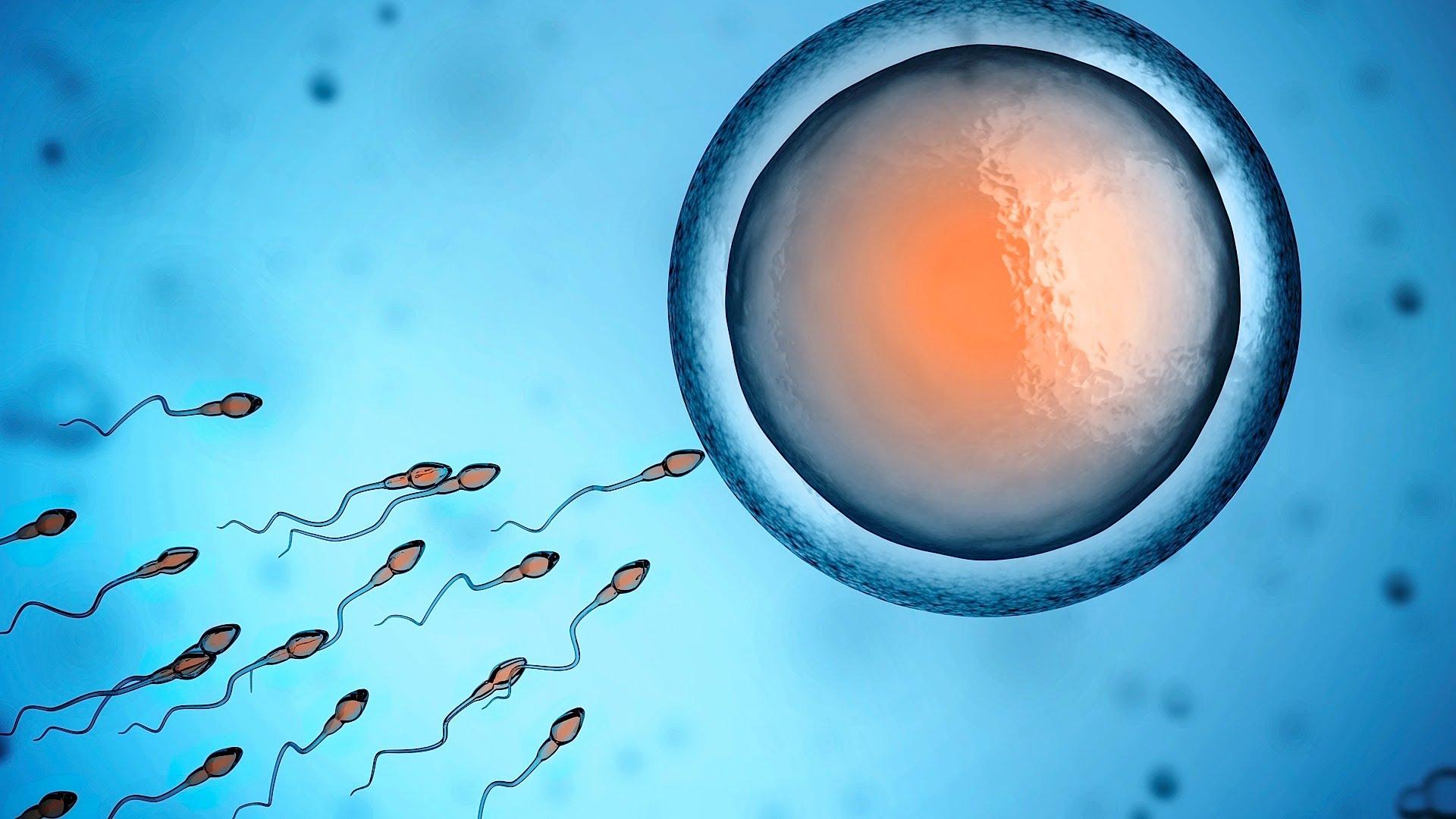 infertility_1